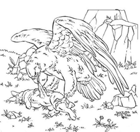 Coloriage a imprimer aigle mangeant sa proie gratuit et - Dessin de aigle ...