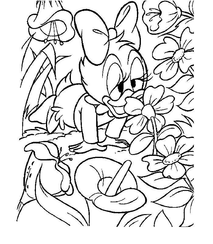 Coloriage Bebe Fleurs.Coloriage A Imprimer Bebe Daisy Et Fleurs Gratuit Et Colorier