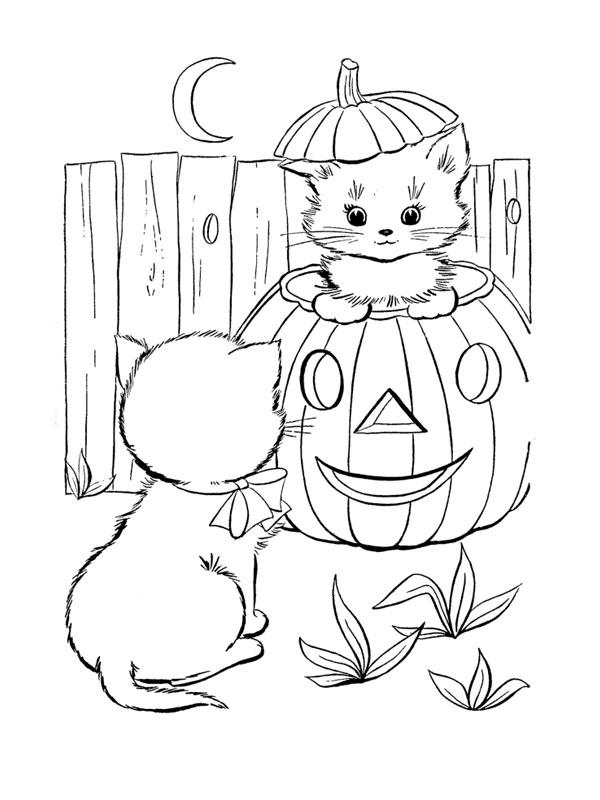 Coloriage a imprimer chaton dans citrouille d halloween - Dessin citrouille d halloween ...