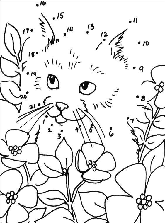 Coloriage point a point a imprimer chaton dans les fleurs - Coloriages chatons ...