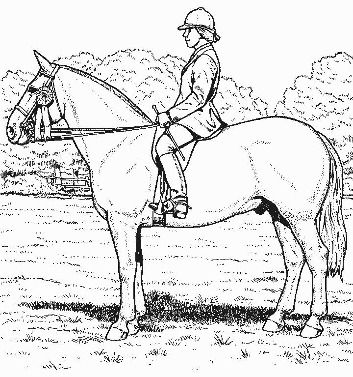 Coloriage Homme Cheval.Coloriage A Imprimer Cheval