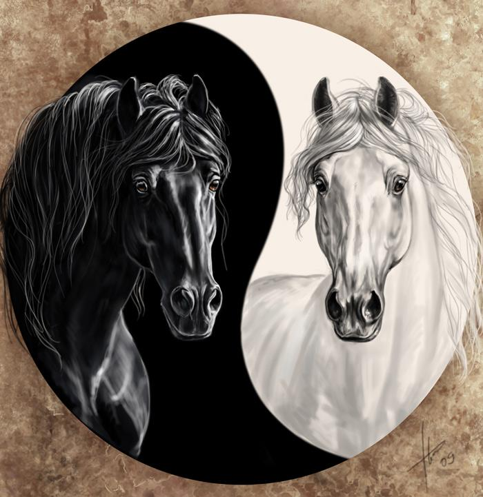 Chanson berceuse et comptine cheval blanc et cheval noir en vid o gratuite pour enfant avec les - Cheval a imprimer noir et blanc ...