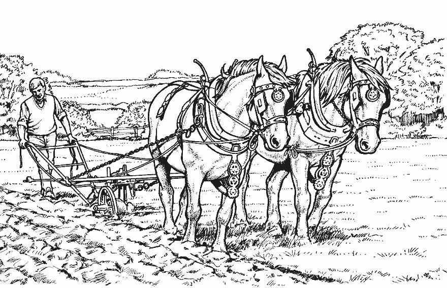 Dessin a colorier laboureur - Dessin de chevale ...