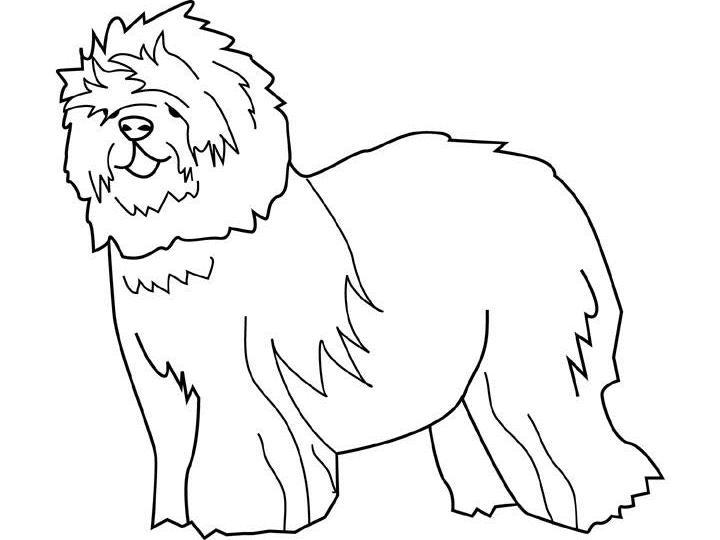 Coloriage a imprimer chien de berger gratuit et colorier - Coloriage de chien a imprimer gratuit ...
