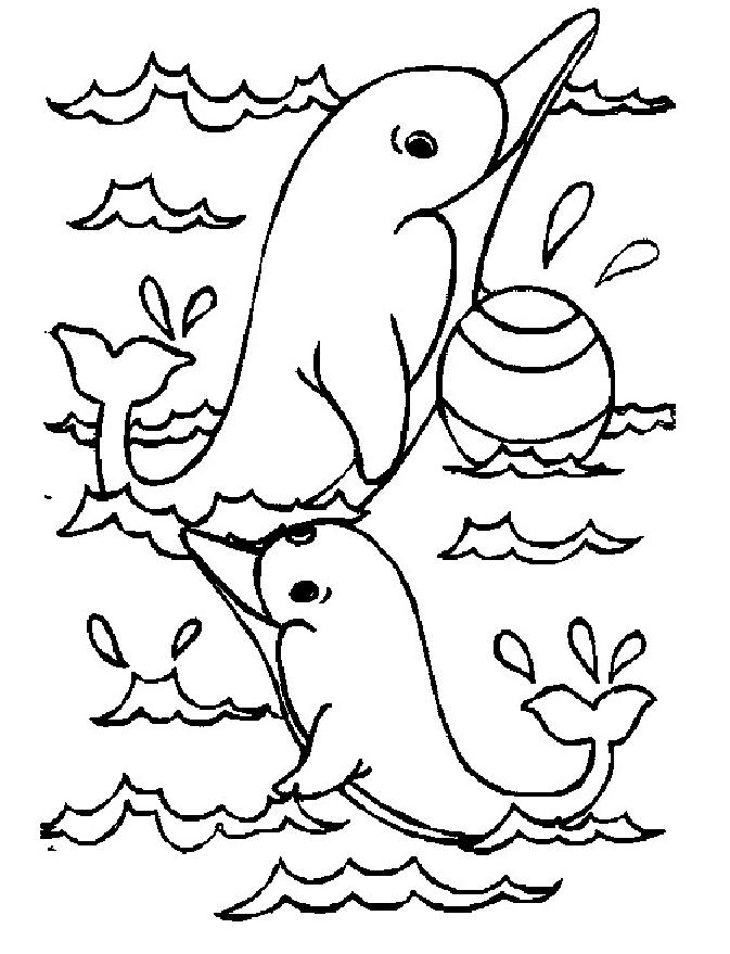 Coloriage a imprimer dauphins jouant avec un ballon gratuit et colorier - Images dauphins a imprimer ...