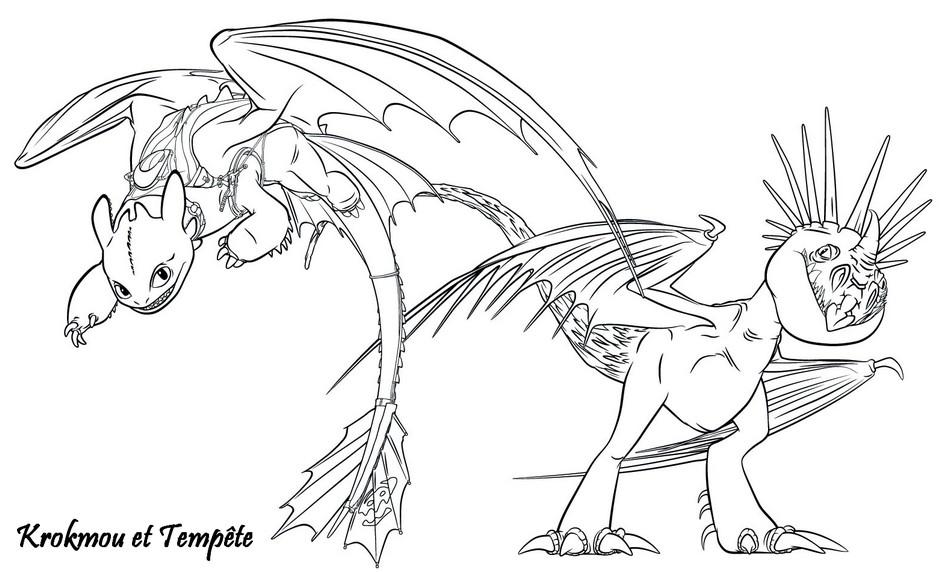 Coloriage A Imprimer Dragons 2 Krokmou Et Tempete Gratuit Et Colorier