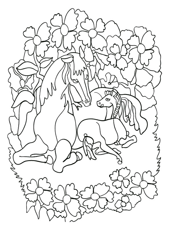 Coloriage cheval grand galop - Grand dessin a colorier ...