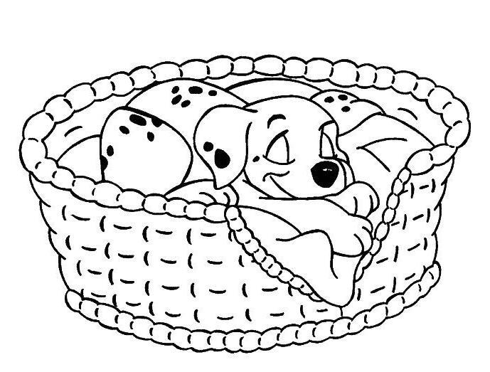 Coloriage A Imprimer Les 101 Dalmatiens Le Chiot Dort Dans