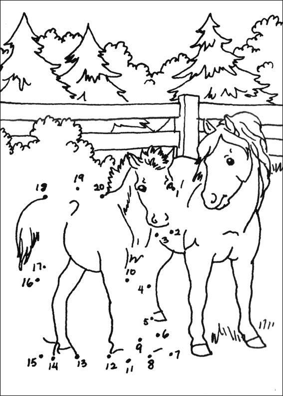 Coloriage point a point a imprimer les chevaux gratuit et colorier - Dessin point a point ...