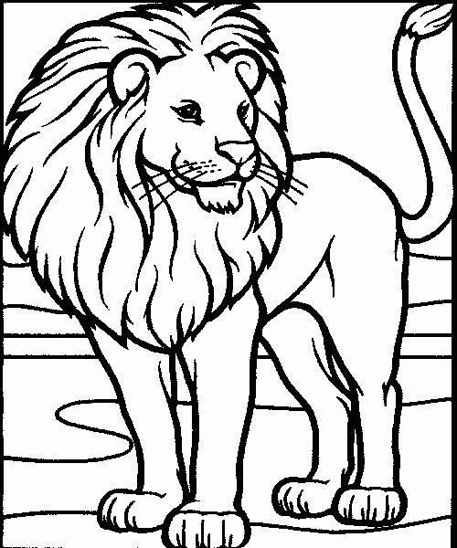 Coloriage a imprimer lion a la belle criniere gratuit et colorier - Images de lions a imprimer ...