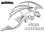 Coloriage dragons furie nocturne le gentil - Furie nocturne dragon ...