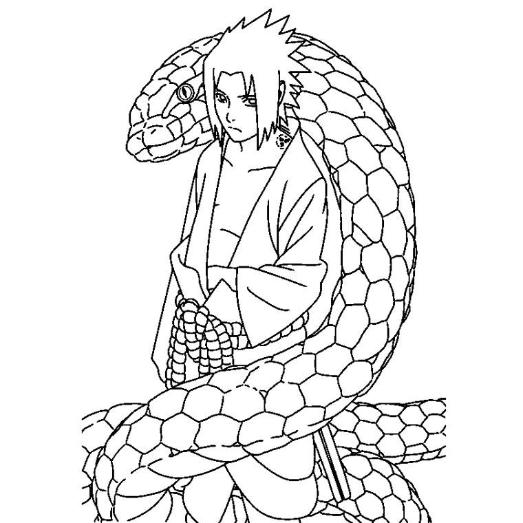 Coloriage a imprimer naturo sasuke et son serpent gratuit - Coloriage naruto imprimer ...