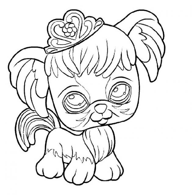Coloriages a imprimer pet shop - Coloriage pet shop ...