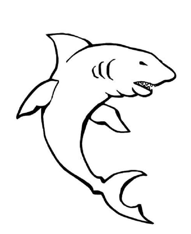 Coloriage a imprimer requin a l affut gratuit et colorier - Requin a imprimer ...