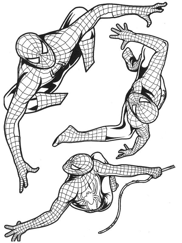 Coloriage a imprimer spiderman dans plusieurs postures gratuit et colorier - Dessin spiderman a colorier gratuit ...