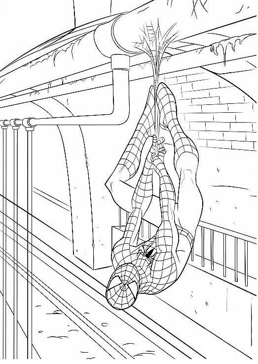 Coloriage a imprimer spiderman pendu tete en bas gratuit et colorier - Photo de spiderman a imprimer gratuit ...
