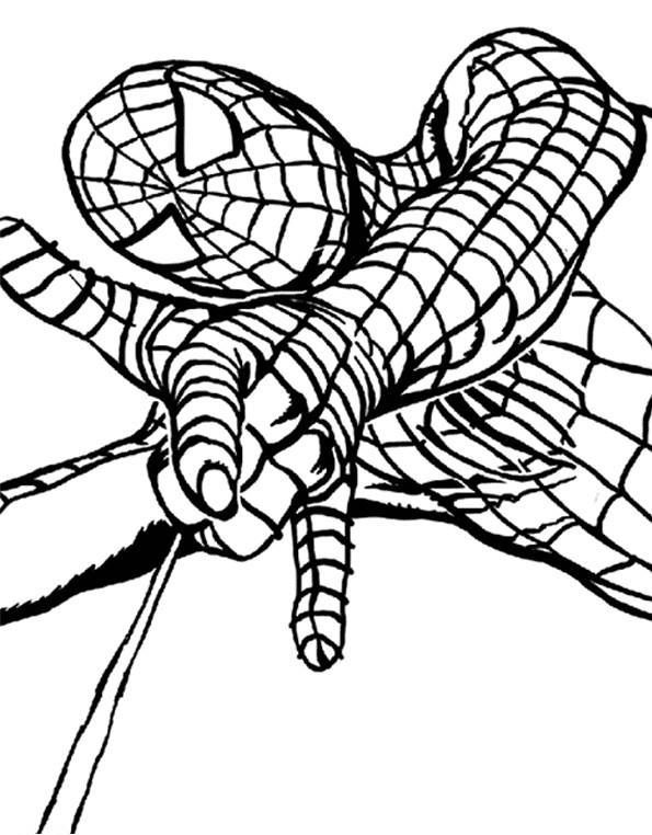 Coloriage a imprimer spiderman tisse sa toile gratuit et colorier - Imprimer coloriage spiderman ...