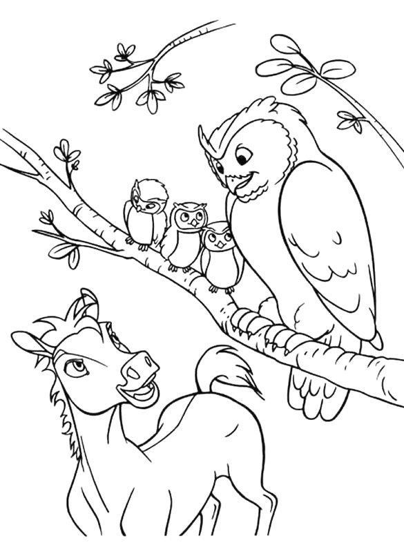 Coloriage a imprimer spirit et la chouette gratuit et colorier - Spirit coloriage ...